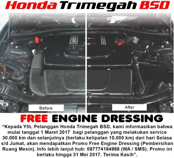 engine dressing htb